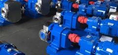 恒时泵业新项目泵顺利发货转子泵厂家