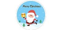 圣诞节快乐!凸轮转子泵厂家